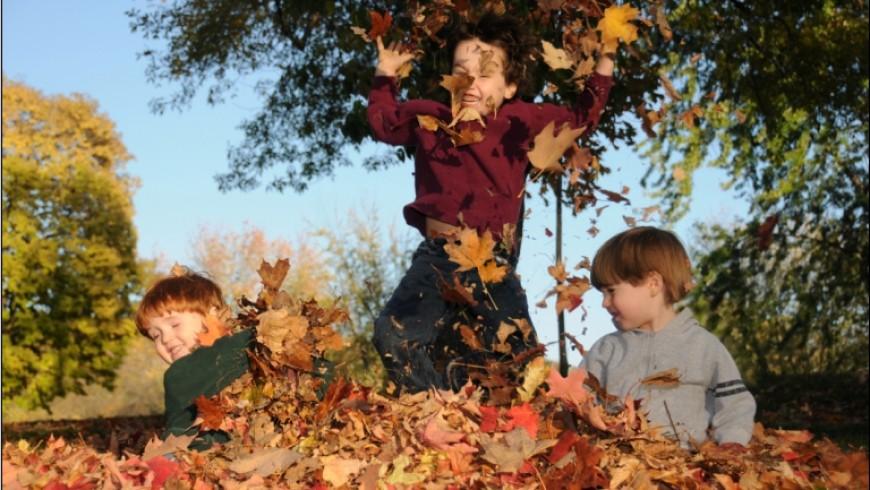 29 de activitati  pe care le poti face  toamna cu copiii